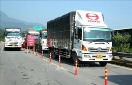 Lào Cai hỗ trợ doanh nghiệp, thương nhân xuất nhập khẩu hàng nông sản
