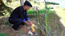 Độc đáo lễ cúng ruộng của người Mông ở Mù Cang Chải