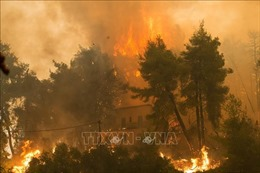 Hàng nghìn người phải sơ tán vì cháy rừng lan rộng ở Pháp