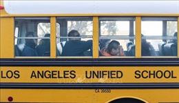 Mỹ: Tình trạng thiếu tài xế xe buýt lại diễn ra