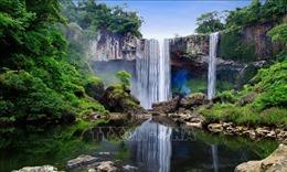 Việc UNESCO công nhận Núi Chúa và Kon Hà Nừng thể hiện sự ghi nhận của quốc tế đối với đa dạng sinh học ở Việt Nam
