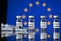 EU gia hạn cơ chế kiểm soát xuất khẩu vaccine