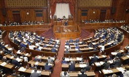 Kết quả thăm dò: Gần 40% cử tri Nhật Bản vẫn chưa quyết định bỏ phiếu cho đảng nào
