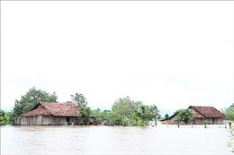 Mưa lũ gây thiệt hại tại các tỉnh miền Bắc, miền Trung và Tây Nguyên
