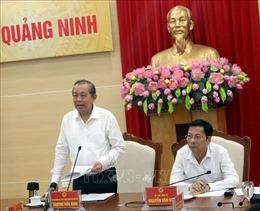 Phó Thủ tướng Thường trực Chính phủ Trương Hòa Bình làm việc tại tỉnh Quảng Ninh