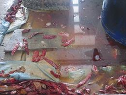 Kinh hoàng phát hiện cơ cở sản xuất ớt muối trong hồ có chứa xác côn trùng