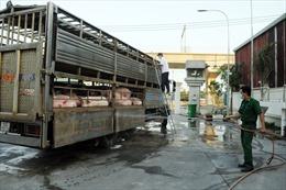 TP Hồ Chí Minh lập thêm nhiều chốt kiểm dịch lưu động ngăn chặn dịch tả lợn châu Phi