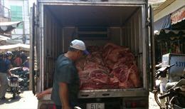 TP Hồ Chí Minh ngưng nhập lợn từ phía Bắc