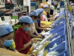 TP Hồ Chí Minh: Tạm đình chỉ hoạt động sản xuất của Công ty PouYuen Việt Nam
