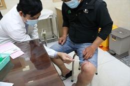 Kiến ba khoang 'tấn công' nhiều chung cư tại TP Hồ Chí Minh