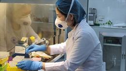 TP Hồ Chí Minh dự kiến nâng khả năng xét nghiệm COVID-19 lên 13.000 mẫu/ngày