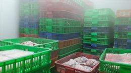 TP Hồ Chí Minh phát hiện hàng ngàn kg thịt gia súc, gia cầm, thuỷ sản không rõ nguồn gốc