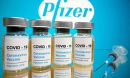 Vaccine COVID-19 của Pfizer-BioNTech dự kiến ra thị trường trước Giáng sinh