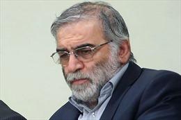 Iran khẳng định có thành viên lực lượng vũ trang tham gia ám sát nhà khoa học Fakhrizadeh