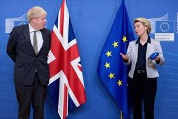 Anh và EU chính thức đạt thỏa thuận Brexit