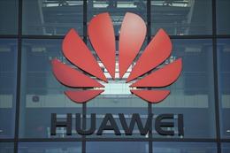 Doanh số điện thoại thông minh của Huawei giảm mạnh do lệnh trừng phạt