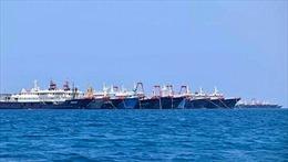 Nghị sĩ Philippines trình dự luật lên án vụ 220 tàu cá Trung Quốc hiện diện trái phép