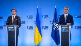 NATO cảnh báo 'tập kết quân sự' lớn nhất của Nga ở biên giới giáp Ukraine