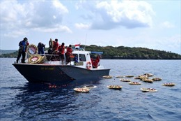 Indonesia tuyên bố sẽ trục vớt từng phần tàu ngầm KRI Nanggala 402