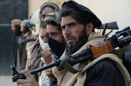 Taliban chiếm 8 tỉnh lỵ ở Afghanistan, Mỹ thừa nhận khó chặn đà tiến
