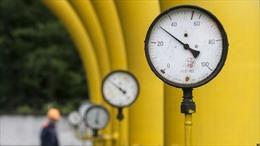 Mỹ muốn Nga tăng lượng khí đốt bán cho châu Âu trung chuyển qua Ukraine