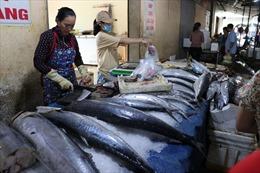Chợ cá Cửa Lò đắt hàng trong mùa du lịch