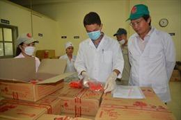 Phát hiện 51 cơ sở thực phẩm không phép tại huyện Thạch Thất