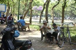 Cách chăm sóc người già ngày nắng nóng như thế nào để tránh sốc nhiệt, đột quỵ?