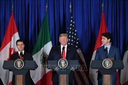 Tổng thống Trump hối thúc Quốc hội sớm phê chuẩn hiệp định USMCA
