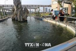 Quản lý và giám sát nghiêm ngặt chất thải của Formosa Hà Tĩnh