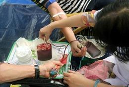 Mới có 1,68% dân số Việt Nam tham gia hiến máu