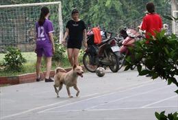 Thiếu khu vui chơi an toàn cho trẻ em tại các khu nhà cao tầng Hà Nội