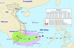 Tin bão khẩn cấp: Bão số 9 vào Biển Đông, biển động rất mạnh