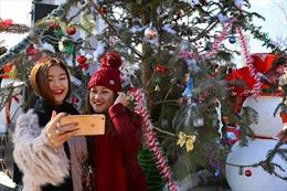 Giảm tới 50% giá vé cáp treo Fansipan trong Lễ hội mùa đông