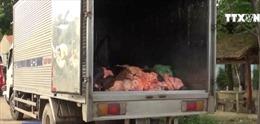 Bắt xe chở 1,4 tấn da, mỡ động vật không rõ nguồn gốc tại Bình Phước