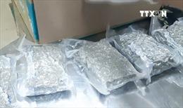 Thu giữ 2,3 kg ma túy gửi từ Mỹ về Việt Nam