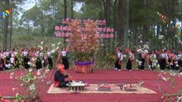 Ấn tượng lễ hội Hết Chá dân tộc Thái