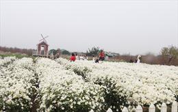 Thời tiết ngày 5/3: Bắc Bộ giảm mây, trời hửng nắng