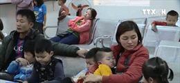 Hơn 1.000 gia đình ở Bắc Ninh đưa con đi xét nghiệm sán lợn