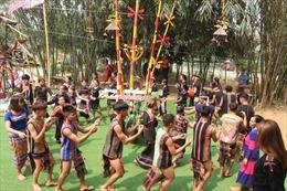 Đặc sắc các hoạt động của Ngày Văn hóa các dân tộc Việt Nam năm 2019