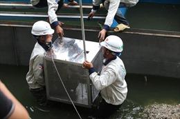 Nhiều ý kiến phản biện về công nghệ làm sạch nước sông Tô Lịch của Nhật Bản