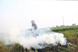 Nông dân đốt rơm rạ sau thu hoạch, khói mù mịt ở ngoại thành Hà Nội