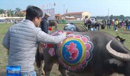 Độc đáo Hội thi vẽ trâu Lễ hội Tịch điền Đọi Sơn