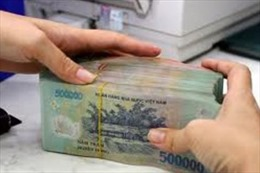 Có dấu hiệu vi phạm hình sự việc góp vốn tăng vốn điều lệ tại Saigon Co.op