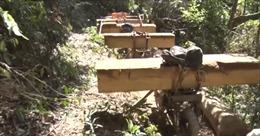Kon Tum bắt quả tang 11 đối tượng khai thác gỗ trái phép