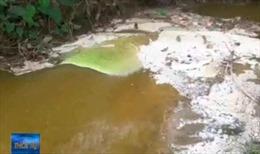 Nhà máy giấy An Lạc xả thải ra suối gây ô nhiễm