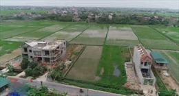 Hàng loạt công trình xây dựng trái phép tại Ý Yên, Nam Định