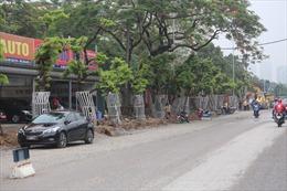 Lắp camera, hàng rào sắt bảo vệ hàng cây sưa đỏ trên đường Nguyễn Văn Huyên