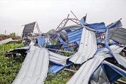 Nhà xưởng Công ty Kiều Thi Junma (Vĩnh Phúc) tan hoang vì bị lốc xoáy