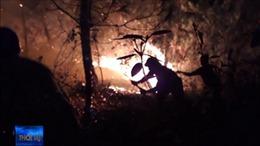 Nghệ An triệu tập những đối tượng nghi đốt rừng